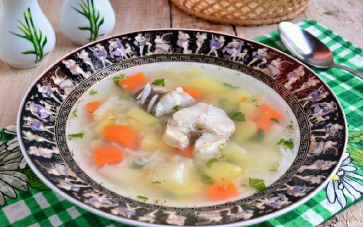 Рыбный суп из хека с рисом для диеты