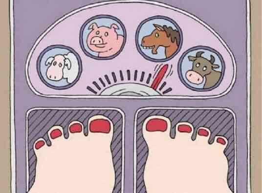 Отвар шиповника для похудения