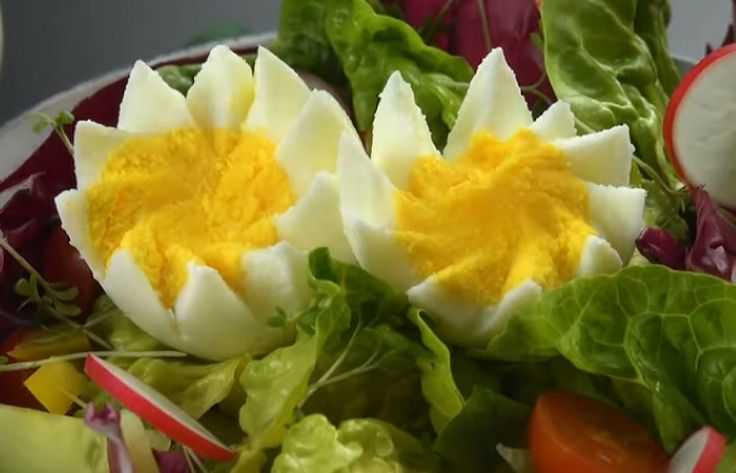 Белковая диета Усама Хамдий на яйцах