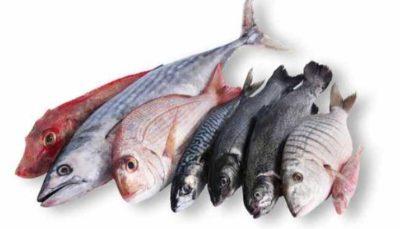 Нзкокалорийная рыба для диетических котлет ПП