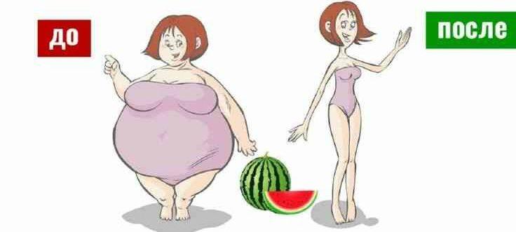 Арбузная диета результаты до и после