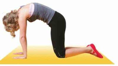 Кошка упражнение дыхательной гимнастики