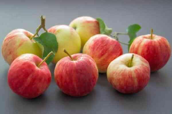 Яблоки вред, польза