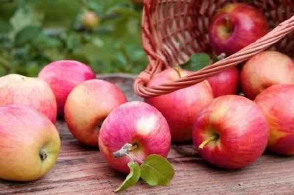 Яблоки при похудении